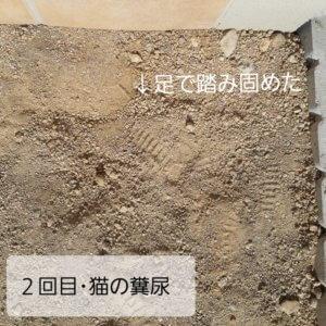 猫の糞尿被害、砂を踏んで固めた