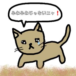 猫の糞尿対策、固い土にした場合